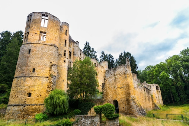 Ruínas do antigo castelo, antigo edifício de pedra, vista geral, europa. arquitetura tradicional europeia, lugar famoso