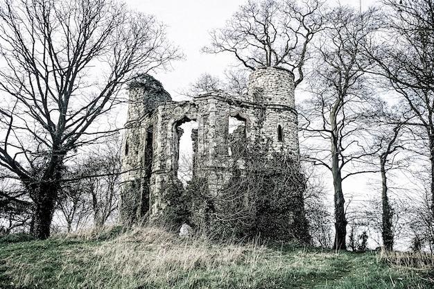 Ruínas do antigo castelo em uma floresta inglesa