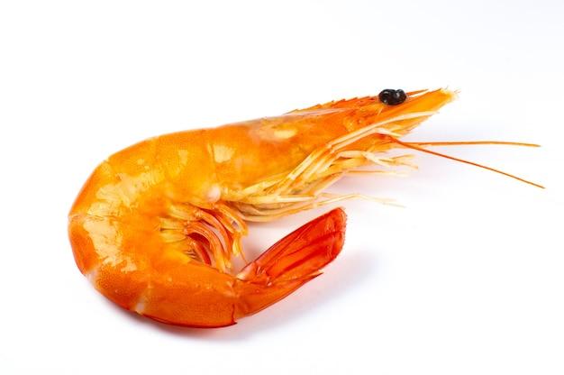 Saboroso camarão fresco ou camarão em fundo branco. feche a foto.