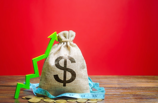 Saco de dinheiro com moedas e seta para cima. o conceito de um negócio de sucesso. aumentar lucros