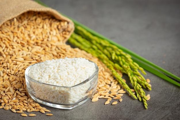 Saco de semente de arroz com arroz branco em uma pequena tigela de vidro e planta de arroz