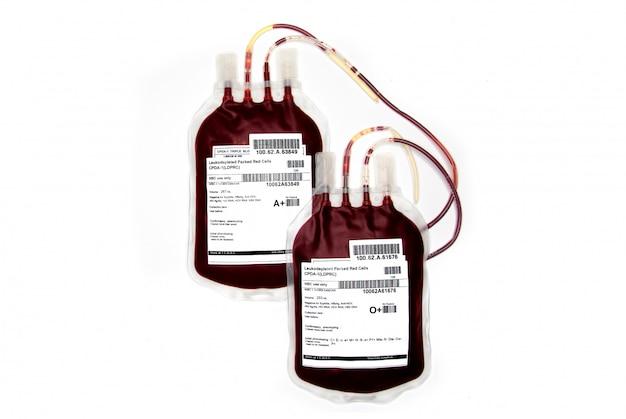 Sacos de sangue fresco