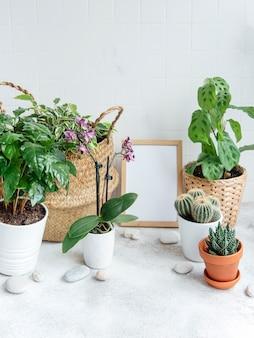 Sala cheia de plantas modernas, jardim caseiro com moldura de pôster simulada