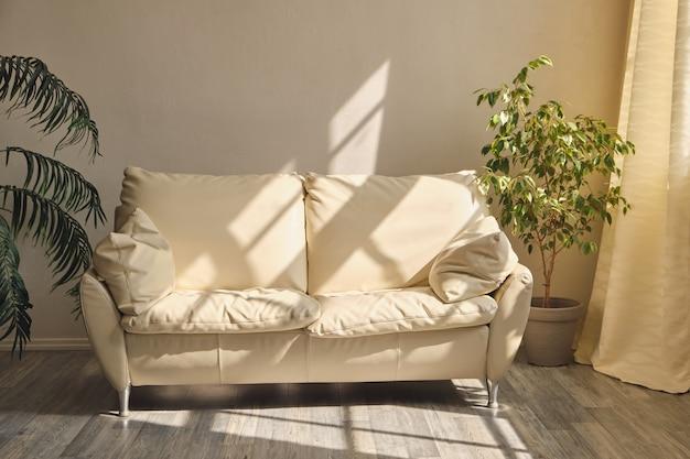 Sala limpa com sofá de couro branco, plantas de interior e luz da manhã vinda da janela
