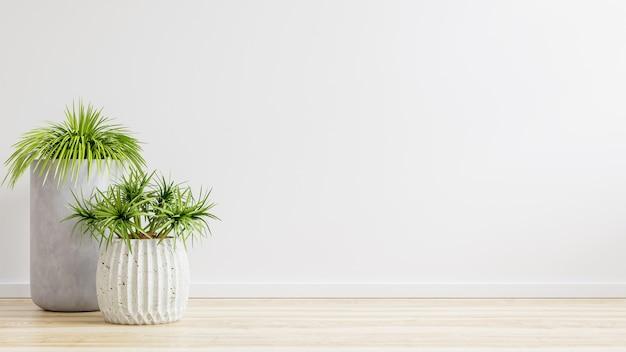 Sala vazia de parede branca com plantas no chão, renderização em 3d