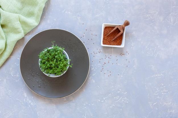 Salada de agrião micro verdes e suas sementes em um prato.
