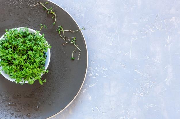 Salada de agrião micro verdes em um prato.