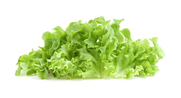 Salada de alface com folhas de carvalho verde isoladas no fundo branco