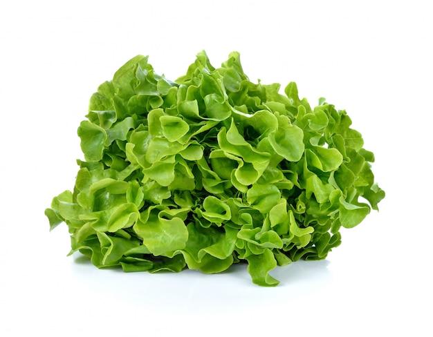 Salada de alface fresca isolada