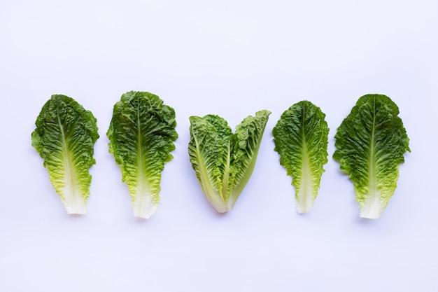 Salada de alface romana deixa em branco