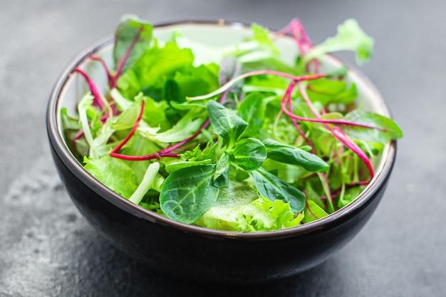 Salada de alface verde com lanche suculento de microgreens