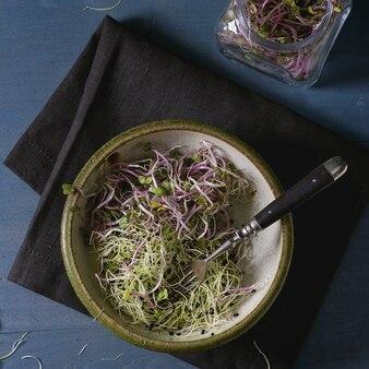 Salada de brotos frescos