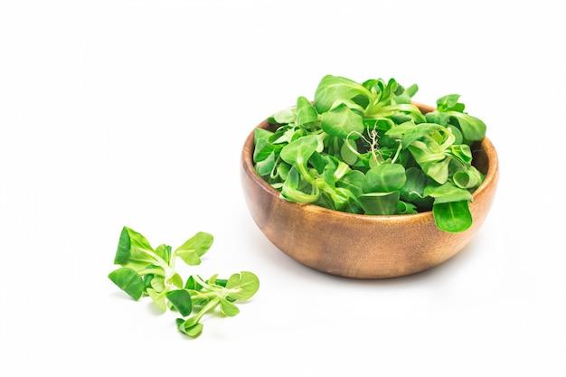 Salada de campo