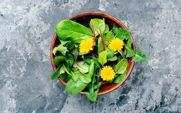 Salada de dente de leão de primavera
