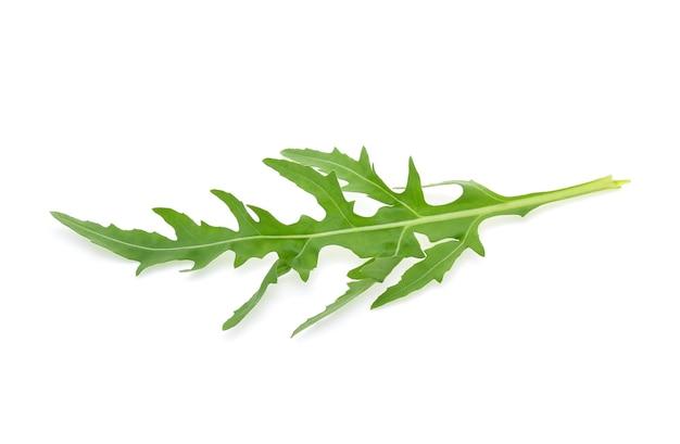 Salada de rúcula doce ou folhas de alface rúcula isoladas no fundo branco