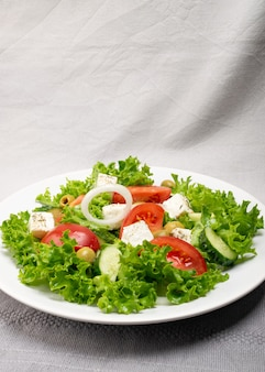 Salada grega ou horiatiki com grandes pedaços de tomate, pepino, cebola, queijo feta e azeitonas em uma tigela branca closeup. salada de aldeia verde com mussarela em cubos, alface, especiarias e azeite de oliva