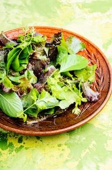 Salada vegana verde