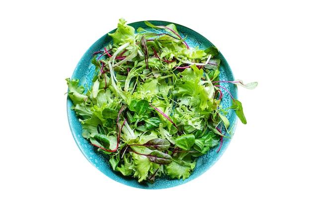 Salada verde fresca com mistura de alface suculenta microgreen