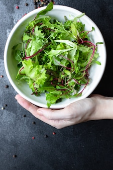 Salada verde fresca de alface mistura suculenta microgreen snack keto ou dieta paleo