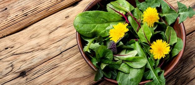Salada verde fresca