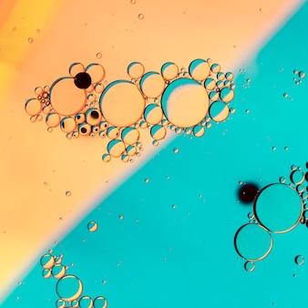 Salmão contrastado e fundo azul com bolhas