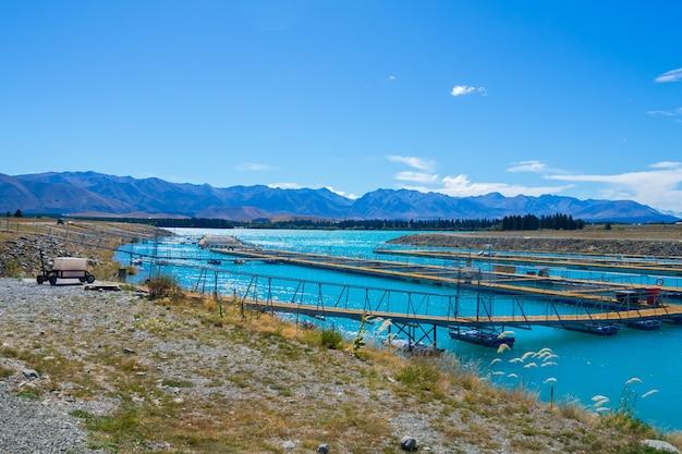 Salmon fish farm, ilha do sul, nova zelândia