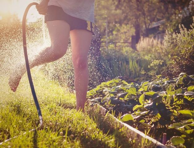 Salpicar na água em um dia quente de verão, se divertir ao ar livre e se refrescar