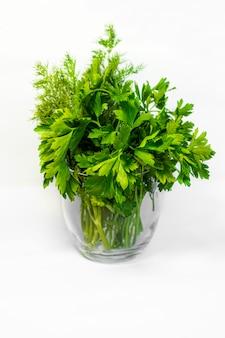 Salsa fresca e endro em um copo com fundo branco. temperos e ervas para cozinhar