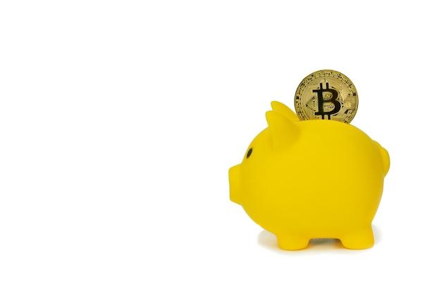 Salvar criptomoeda no conceito de cofrinho investimento para negócios