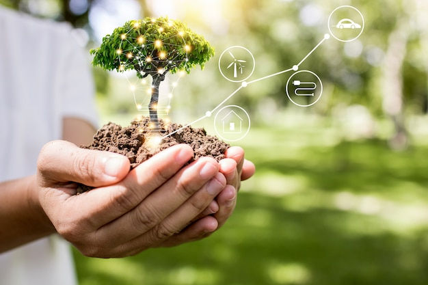 Salvar o mundo e o conceito de inovação, garota segurando pequenas mudas de plantas ou árvores estão crescendo do solo na palma da mão com o conceito de linha, ecologia e conservação de conexão