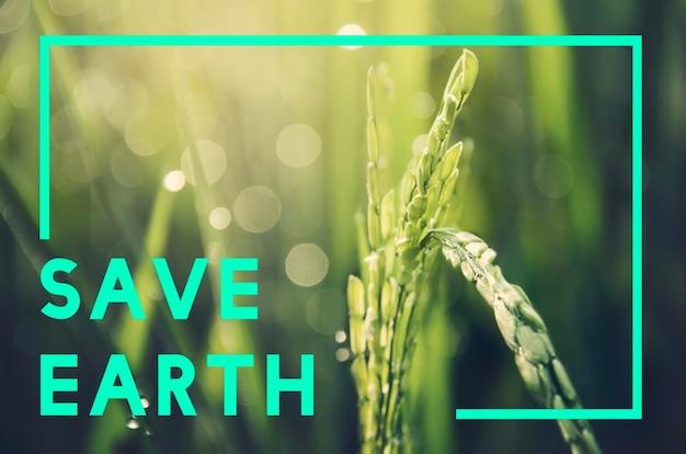 Salve o conceito do planeta terra