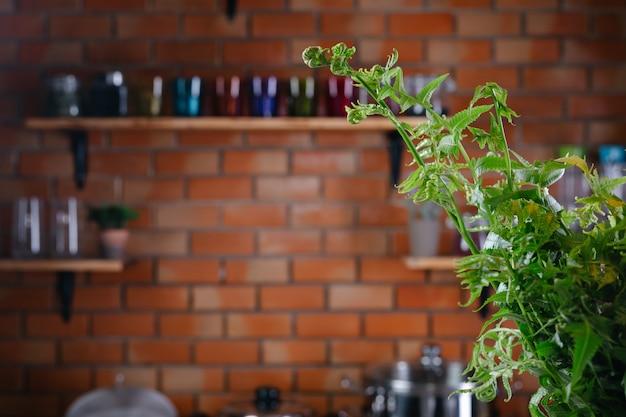 Samambaias verdes aparecem no chão da cozinha.