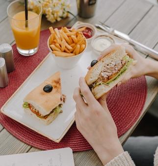 Sanduíche de frango com batatas fritas vista superior