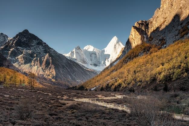 Santo yangmaiyong com floresta de pinheiros no vale rochoso e trilha de madeira