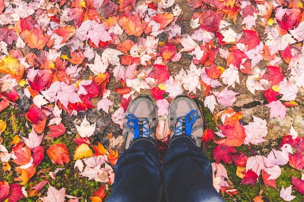 Sapatos de caminhada com folhas vermelhas ao redor