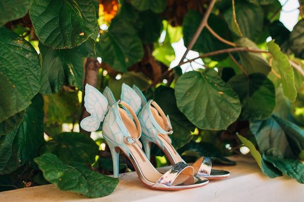 Sapatos de casamento de uma noiva nas folhas de uma árvore de kiwi