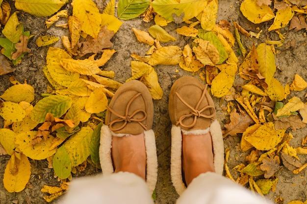 Sapatos de chinelo quentes parados em muitas folhas de bordo caídas de cima
