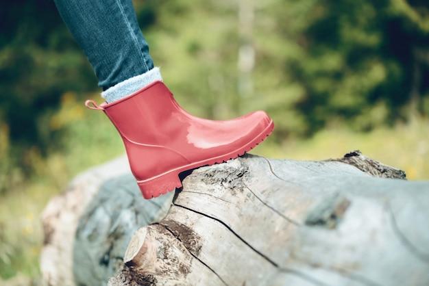 Sapatos de mulheres vermelhas na árvore nas montanhas dos cárpatos