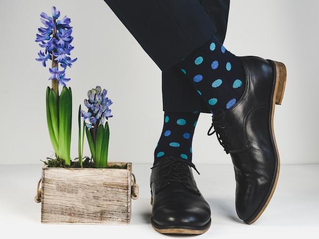 Sapatos elegantes, meias brilhantes e plantas