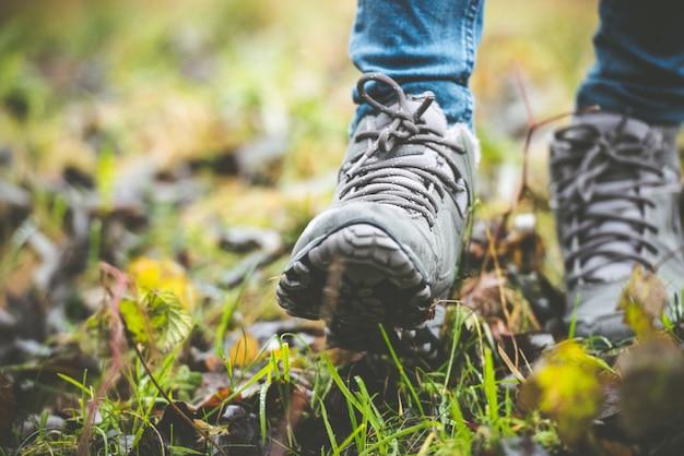 Sapatos em uma floresta