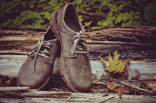 Sapatos masculinos marrons novos e elegantes.