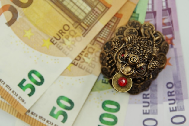 Sapo chinês do feng shui sentado nas notas de euro