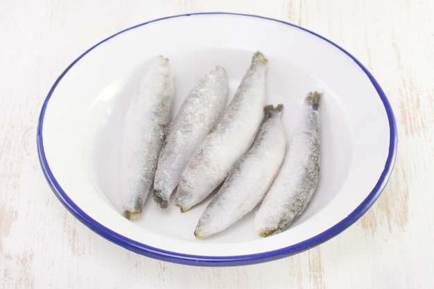 Sardinhas congeladas no prato branco na superfície branca