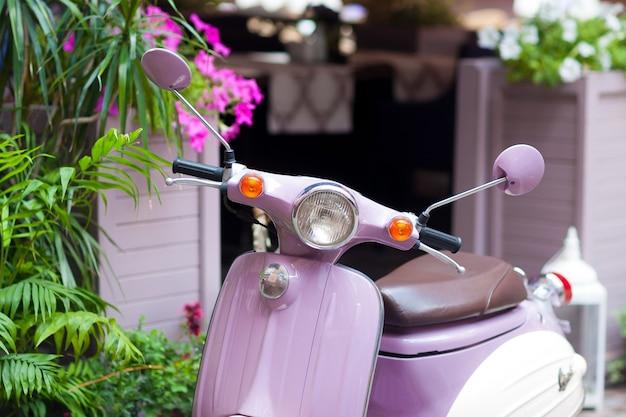 Scooter lilás estacionada na rua florida