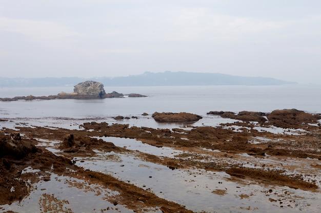 Seascape agradável na maré baixa