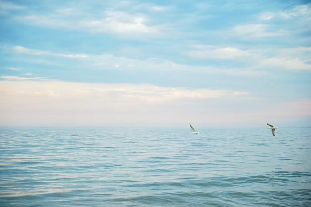Seascape com horizonte de mar e o céu azul.