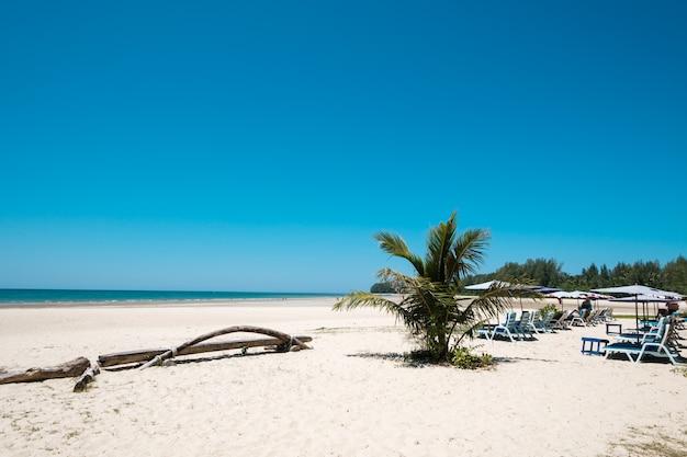 Seascape da praia tropical bonita com céu calmo. opinião do mar e praia da areia, fundo do verão.
