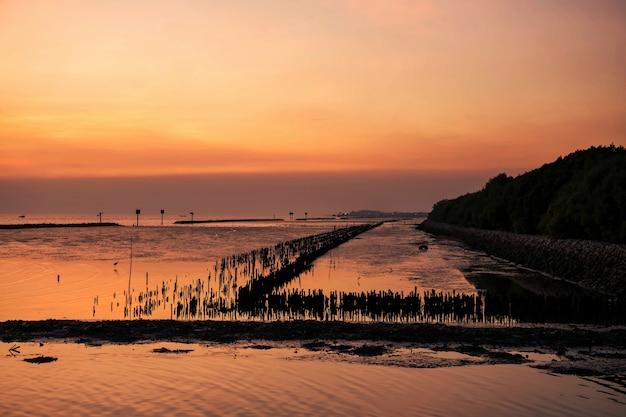 Seascape de bang pu e com floresta de árvores de mangue de silhueta ao pôr do sol com céu crepuscular, samut prakan, tailândia. marco famoso para o pássaro gaivota e vista ao entardecer.