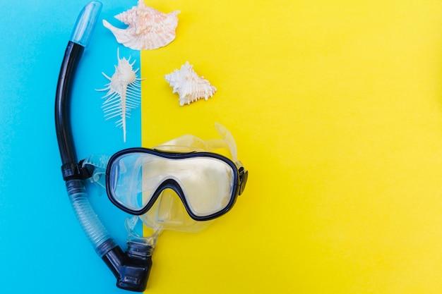 Seashells e máscara para mergulho