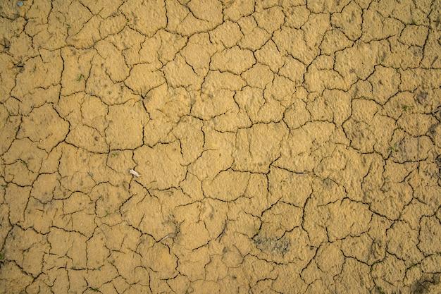 Seca rachou o chão por um longo período sem chuva, como no deserto